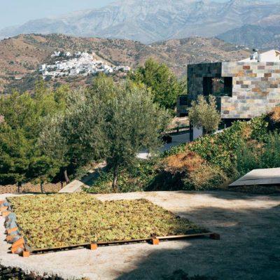 Wine Stuff | La Zahurda